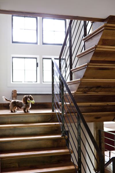 berkshires-rich-holben-stairs-dog