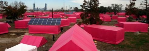 pink-darden-700x240